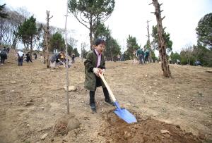 베어트리파크 식목일행사참여, 아이와함께 클 나무를 심다