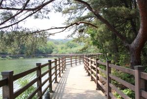 싱그러운 초록의 고복저수지 산책길에서 힐링스토리