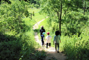 """아이들과 함께 떠나는 원수산 """"치유의 숲"""" 체험 프로그램"""