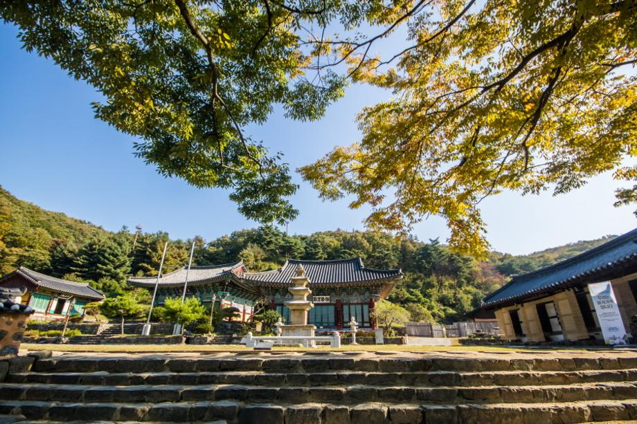 Famous Temples in Sejong city fitting in well with fall.
